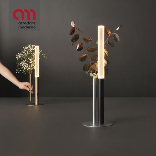 Ognidove Cini & Nils Lampe